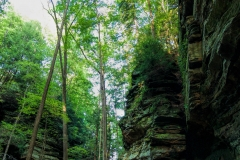 Shades State Park | Waveland, Indiana | Indiana State Park | Image by Indiana Architectural Photographer Jason Humbracht